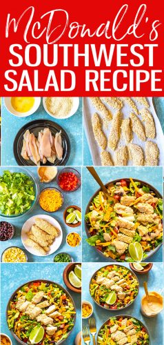 This McDonald's Southwest Salad is a delicious copycat recipe of the fast food chain's salad, right down to the smoky southwest dressing and crispy chicken!  #mcdonalds #southwestsalad