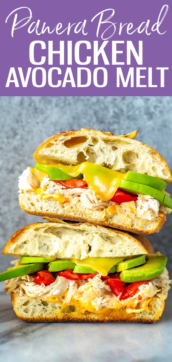 This Chipotle Chicken Avocado Melt is a copycat of the Panera Bread sandwich, complete with focaccia bread, smoked gouda & roasted red peppers! #panerabread #avocadomelt